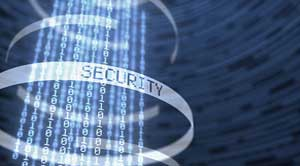 Microsoft Office 365: What Should I Look for When Selecting a SaaS Data Protection Provider?